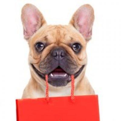 Photo of ¡Increíble! Perro realiza las compras de la casa en plena cuarentena